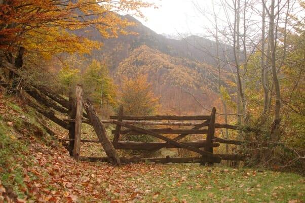 Asturias, tradición y placer