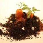 Zanahorias de yogur de hierba luisa plantadas en un huerto de galletas oreo y streussel de cacao