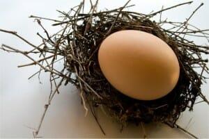Todo sobre los huevos