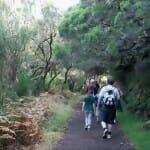El senderismo es una actividad de ocio para toda la familia para la que Madeira ofrece rutas especialmente interesantes