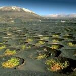 Los zocos de La Geria configuran un paisaje singular y extraordinario