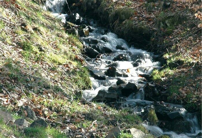 Fuentes de Lebanza es un agua buena para la salud, con un precio muy accesible y deliciosa en el paladar