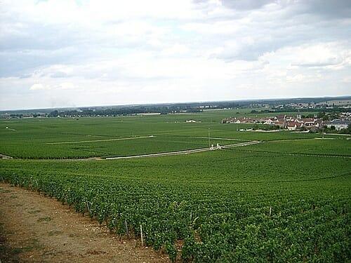 La reputada bodega borgoñona recibió un anónimo a principios de año, en el que se amenazaba con envenenar parte de las botellas si no pagaba 1 millón de euros