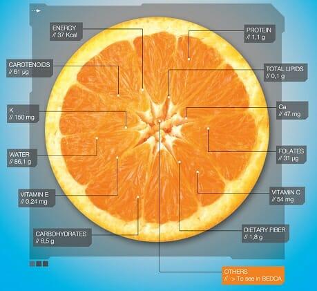 Gracias a la Base de Datos Española de Composición de Alimentos podemos saber cuántas calorías tiene cada alimento y cuál es su composición nutricional