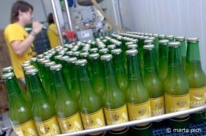 Más del 50% de las micro-cervecerías tienen sede en Cataluña