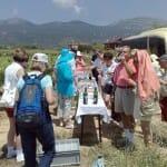 Sasazu de Samaniego permite al visitante participar en la vendimia y comer en las viñas (Foto: César Saenz de Samaniego)