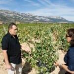 César Saenz de Samaniego nos enseñó las viñas de su bodega: Sasazu de Samaniego