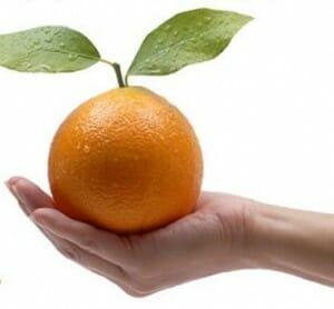 Naranjas: del campo a casa en 24 horas gracias a Internet