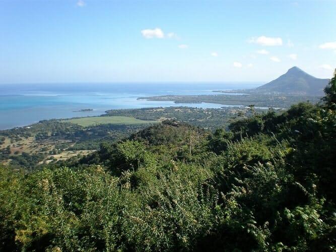 Bosque tropical en Isla Mauricio