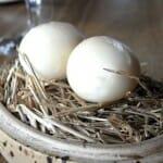 Huevos de codorniz escabechados y ahumados