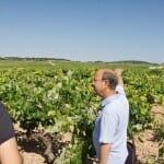 En los viñedos de Latorre Agrovinícola con Luis Miguel Latorre