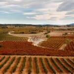 Somontano: vinos, cultura, naturaleza y una joya: Viñas del Vero Gewürztraminer