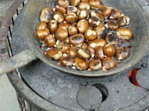 Tixolo con castañas (Fuente: WikiMedia)