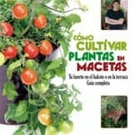 Cómo cultivar plantas en macetas: tu huerto en el balcón o en la terraza