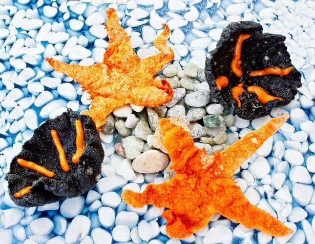 """Estrella de mar entomatada, un colorido snack del menú """"El Sabor del Mediterráneo"""" de Quique Dacosta"""