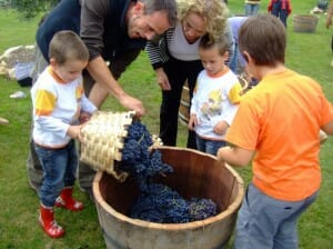 Actividades que se pueden hacer en familia en las Bodegas David Moreno. La Rioja