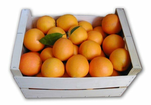 Sorteamos cada semana dos cajas de cinco kilos de naranjas de Naranjas María