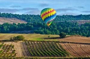 Viaje en globo sobre los viñedos de la bodega