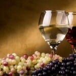 Los mejores vinos del año de hasta 5 euros