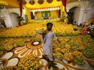 En La India se cultivan más de 500 variedades de mango