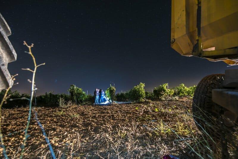 Vendimia nocturna en viñedos Hermanos Villar, Rueda