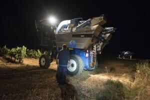 Máquinas en plena vendimia nocturna