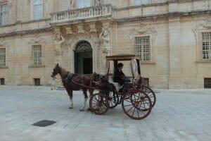Paseo en coche de caballos. Medina