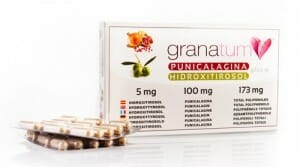 Extracto de Granada