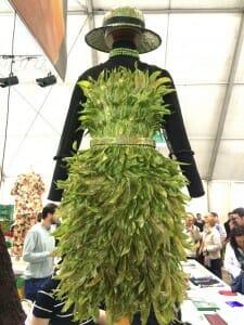 Vestido de alubias verdes