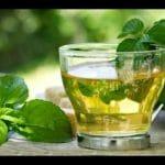 Té verde: todas sus claves, cualidades y la forma de prepararlo correctamente
