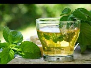 Infusión té verde