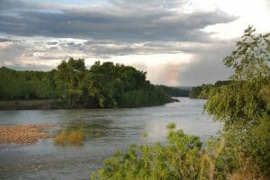Los Sotos del Ebro de Alfaro, reserva natural