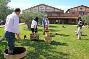 Divertida 'vincana' en La Rioja