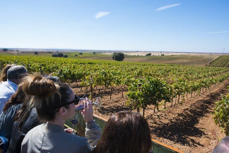 De vinos por Extremadura: bodegas, balnearios y paisajes para el otoño