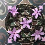 Noor: el Al Andalús más gastronómico y mágico