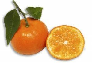 Mandarinas de Naranjas Lola
