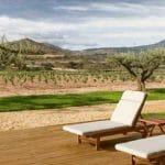 Otoño entre olivos, vinos con historia y buenas mesas en La Rioja