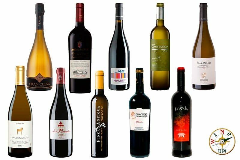 Diez grandes vinos para conocer Castilla La Mancha