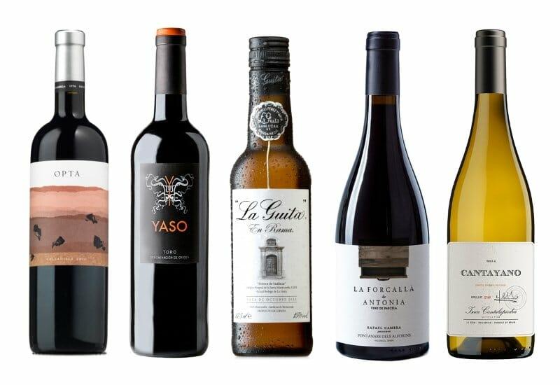 Los diez mejores vinos por menos de 10 euros