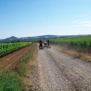 Paseo en Segway por Viñas del Vero