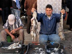 Subasta de pescado en la Isla de Djerba