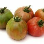 En verano, los mejores Tomates Valencianos y Tomates Raf, a domicilio