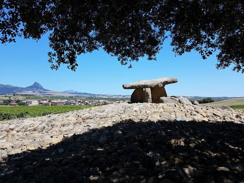 Ebro: camino de agua, tierra de vino