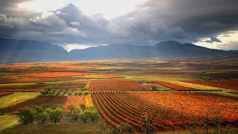 Cinco planes que te harán soñar este otoño en La Rioja
