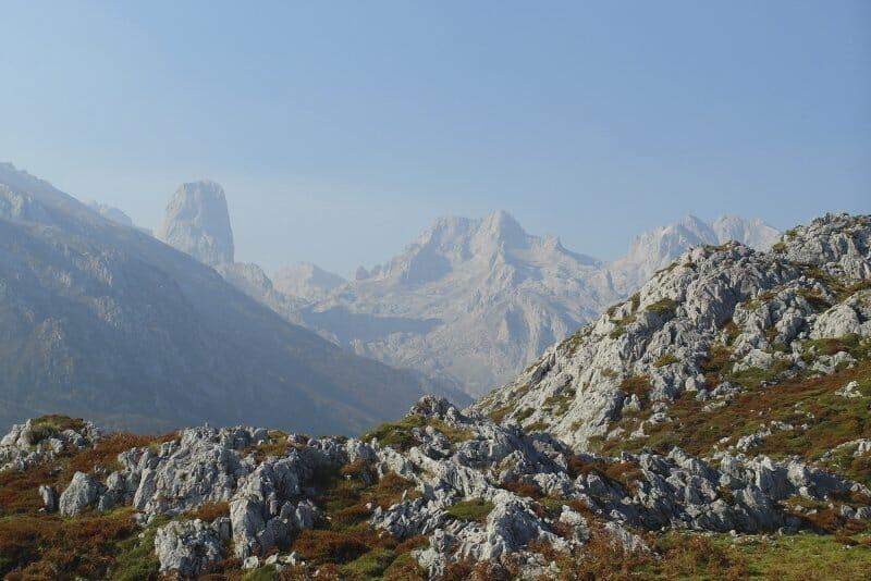 Sidra y Cabrales, imprescindibles en Asturias