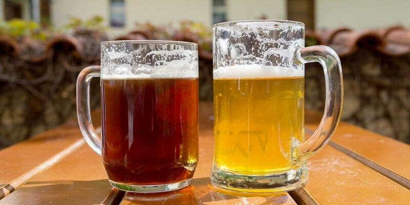 Lager y Ale, las dos familias a las que pertenecen todas las cervezas