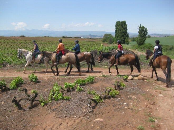 Enoturismo primaveral: cinco planes entre viñedos… y vinos de La Rioja