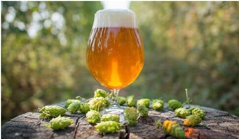 Las mejores cervezas artesanas para el verano