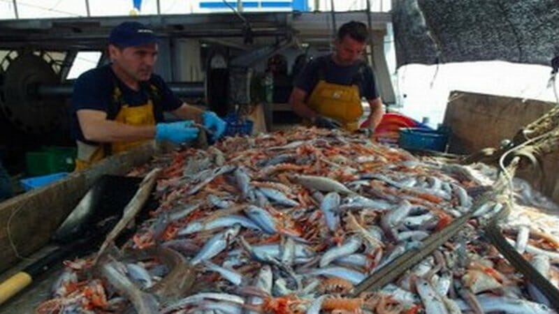 Marinero por un día: una experiencia única en el mar Mediterráneo