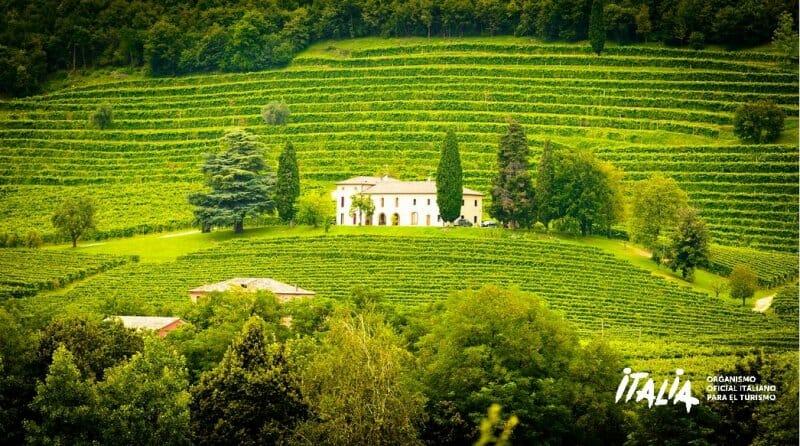 Vinos y licores italianos, cuando la tradición se convierte en excelencia